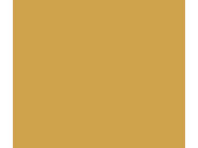 gold teen program